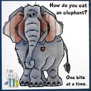 eating-the-whole-elephant[1]
