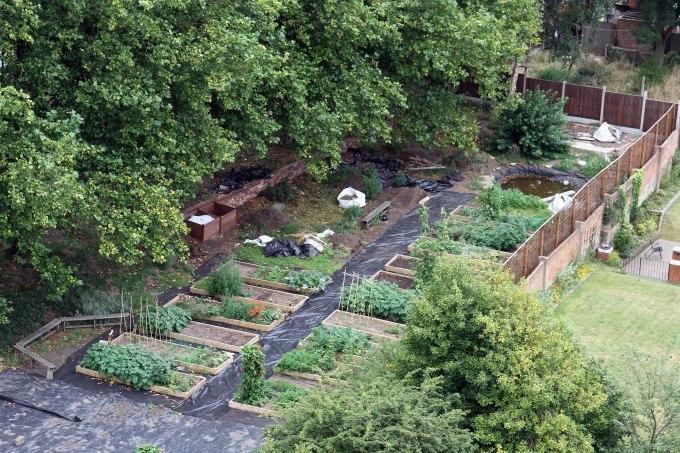 community garden after